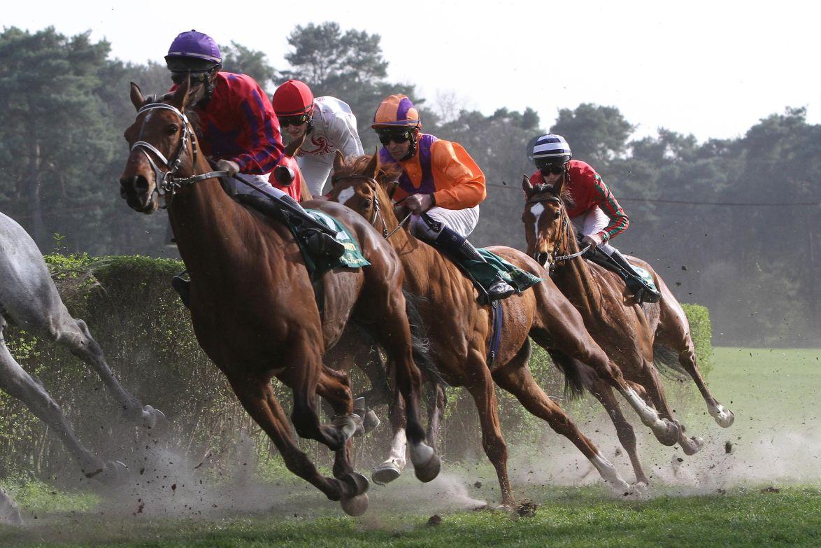 Mannheim Pferderennen