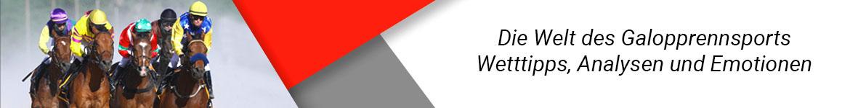 Pferderennen Homepage Banner