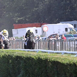 Rennen in Hoppegarten - Vorschau